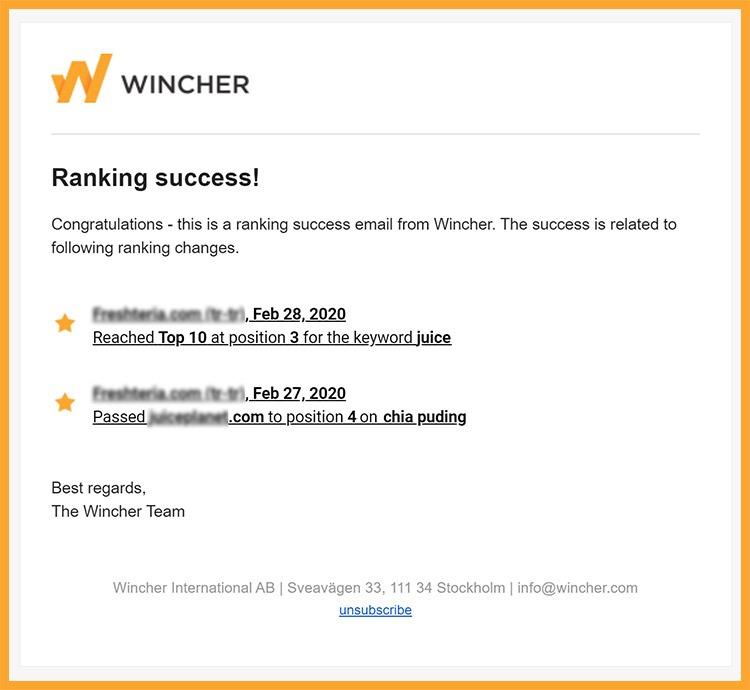 SEO tool rank success notification